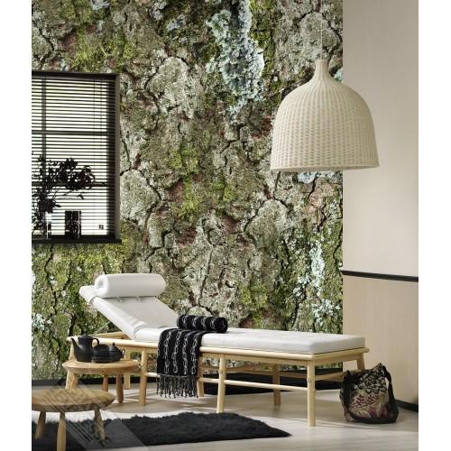 New Materials Forêt de Fontenay INK7072